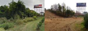 left image shows lush tress and vegetation in front of a large bill board. Right image shows the same area after trees and vegetation have been removed, the large billboard is the only visible object. This is due to the North Carolina tree cutting law.